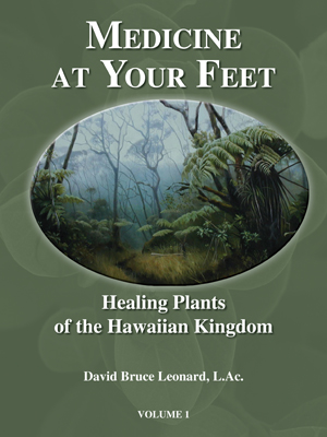 Medicine at Your Feet - Buy on Amazon